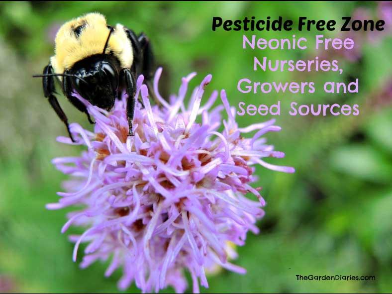 Neonic Pesticide Free Nursery