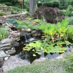 Transforming a Hillside into Pond and Waterfall
