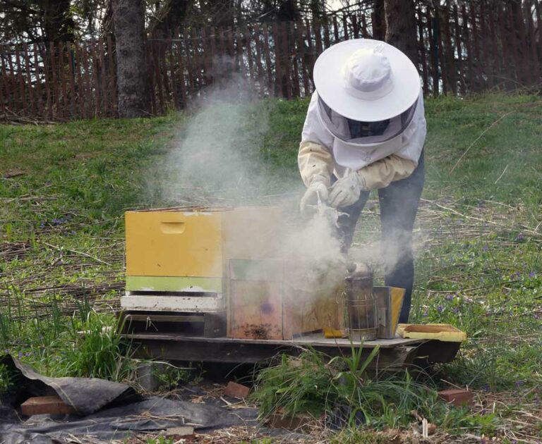 Blog-#9-Beekeeping-for-Newbees-and-Wannabees-sm