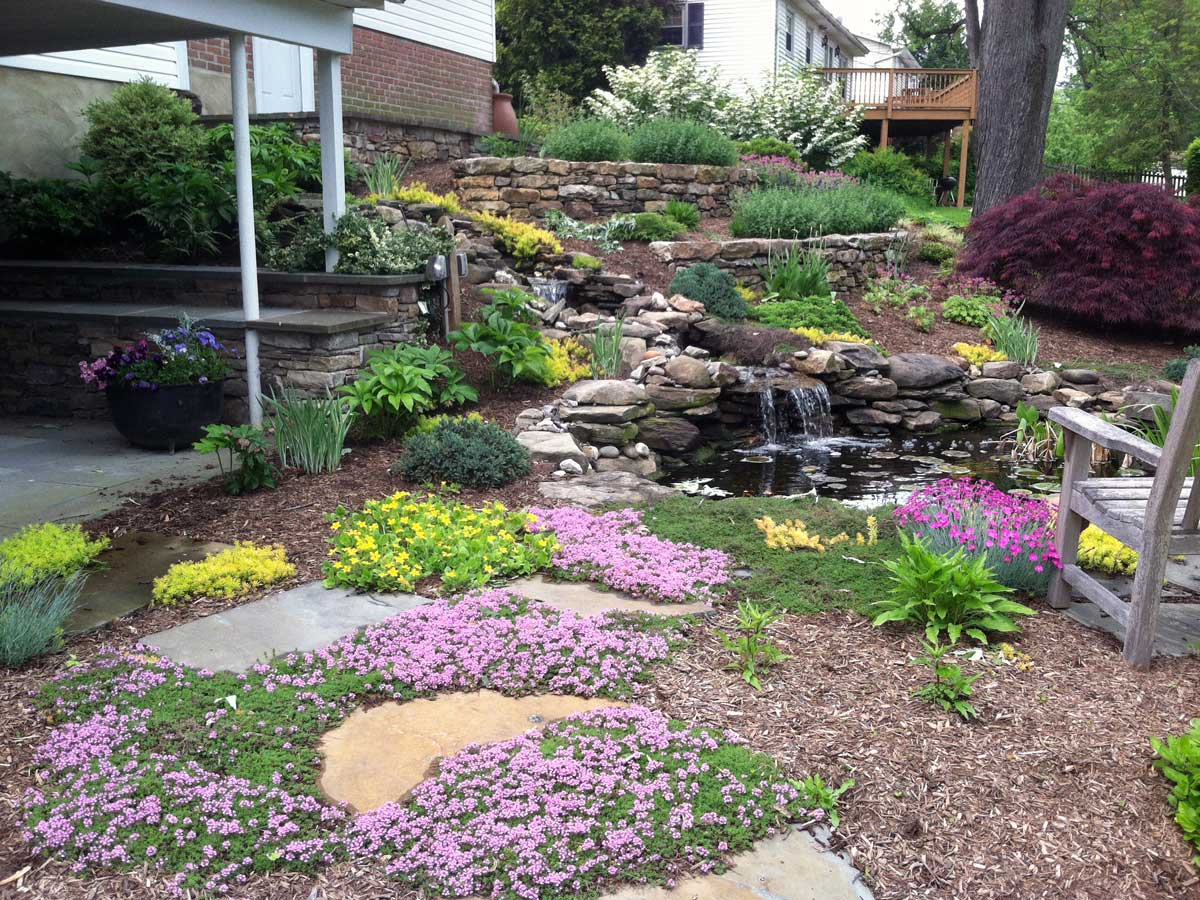 Plantings-around-a-pond-and-waterfall