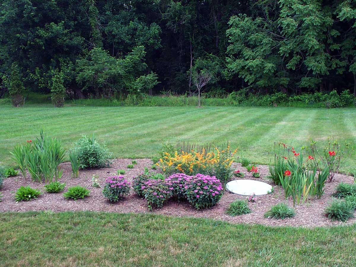 Pollinator-garden-installation