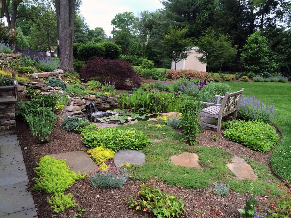 Pond-plantings