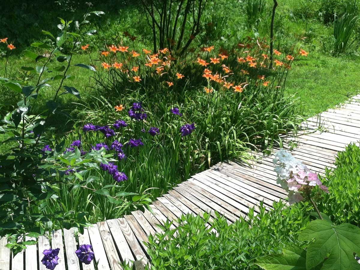 Rain-Garden-Installation